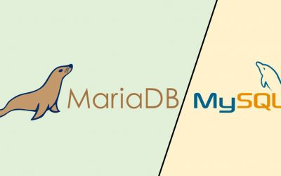 Tout ce que vous devez savoir sur les technologies de bases de données : Mariadb & MySQL